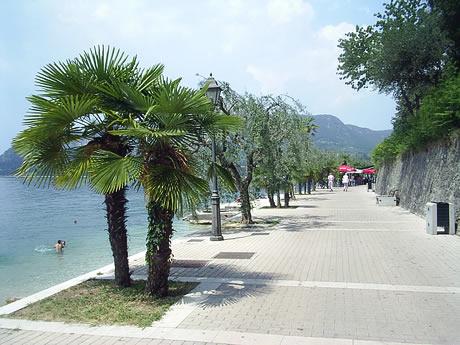 Promenade mit  cu Palmen, Garda